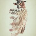 Owl habitat double exposure artwork.
