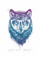 wolf animal drawing humor funny grandmother grunge littleredridinghood