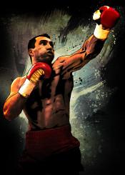 steelhammer steel hammer wladimir kliczko klitschko boxing sport red gloves ring legend fighter fighting champion