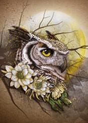 owl moon flowers