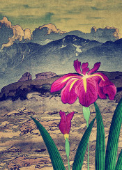 japan mountains flower clouds sky purple blue green white brown