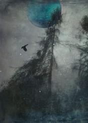 monochrome blue grey trees silhouettes landscape moody dreamy surreal bird texture haze moon silver spooky nature outdoor manipulation digital