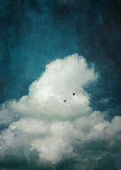 painterly birds textures cumukus cloud minimalism digital illustration cyan blue white