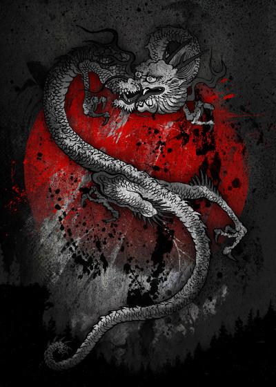 Fanfreak  Samurai l Ninjas l Dragons   Displate Prints on Steel