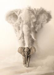 elephant animal dad father son elephants family sand nature king illustration wild savage