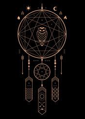 dreamcatcher dreams night owl spiritual fantasy stars black nature landscape earth poster wall animal sun moon