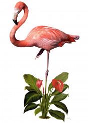 flamingo bird tropical tropicana plant pink drawing painting jungle
