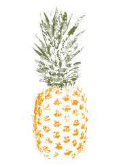 pineapple fruit summer ink watercolor food fruity