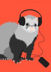 ferret music audio musical headphones funny animals animal ferrets pet pets cute fluffy cool vector illustration musician