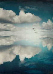 clouds surreal cyan white manipulation backlight birds texture composing minimalism