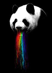 panda animals rainbow vomit