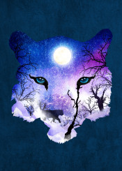 designstudio cat tiger leopard mystical forest nature night moon eyes spell magic wild woods stars mytery blue purple silhouette feline snow mountains winter
