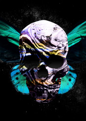 skull dead butterfly horror macabre photomanipulation photoillustration scary spooky