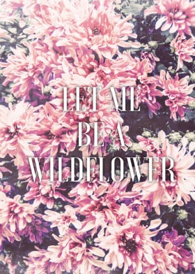 flower floral wildflower wild free freedom mum peony peace vintage filter women for her girly cute pretty pink