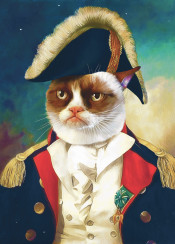 grumpycat cat cats animals art painting love sad hat costume army navy captain fury fur cute medal gold blue