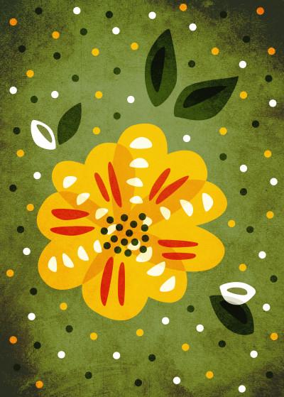 Boriana Petrova Floral   Displate Prints on Steel