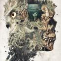 My original dark surrealism called Forest Lake Dream