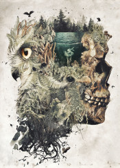surrealism animals owl owls skull dark evil nature beautiful detailed leaf leaves trees lake water forest dream fantasy original magic death dead face photo bird profile dreamy dreaming abstract conceptual artistic mushroom eye plants