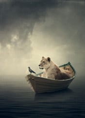 lion boat crow sea water calm sky light moody texture