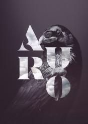 raven auro black