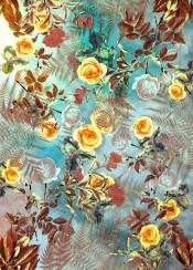 flora floral flower flowers rose roses