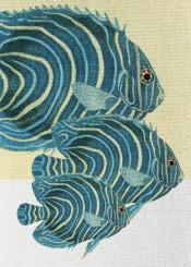art digital animals fish colors
