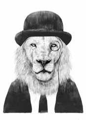 lion animal blackandwhite humor funny portrait drawing london