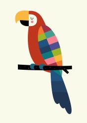 rainbow parrot cute palette confidence beautiful love universe