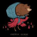 kazooie banjo!