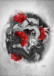 dragons yingyang blackwhite