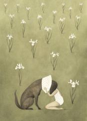 dog love iris flowers animals