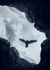 bird rocks mountains clouds mood cave mirror texture landscape photomanipulation