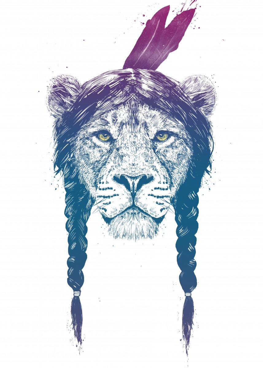 Warrior lion II 226651