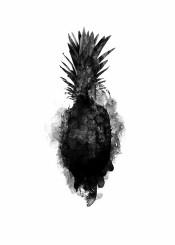 pineapple fruit black white ink paint texture illustration streetart