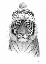 tiger cat animal winter blackandwhite humor funny drawing beanie