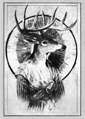 deer hype hipster poster mono monochrome black white antlar student cool vintage indie suit female male eye retro fanfreak illustration kill hunt fan art fine line inking ink drawing