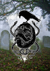 graveyard rook bird black skull snakes