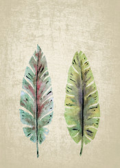 plants leaves leaf watercolor pastel grey textures abstract green blue modern piaschneider decorative soft harmony