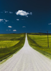 trail dirt road less travelled path farm field grass plains sky clear clouds landscape scenic scenery vibrant