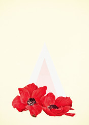 flowers poppy red black pink white abstract minimal geometric triangle modern vintage