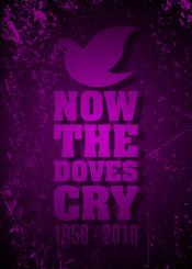 tribute prince dove whendovescry
