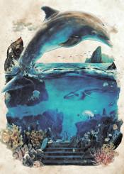 ecco dolphin sea ocean landscape fantasy water salt coral reef magic life animals fish underwater ancient atlantis whale shark scuba jump swim sega 80s 90s genesis biology marine ecology plants rocks surreal surrealism