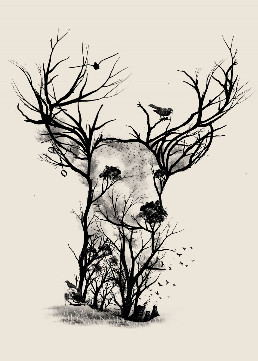 Wild Buck 255494