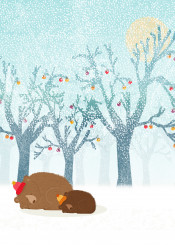 winter bears animal snow blue nature forest