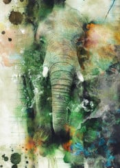 elephant wildlife painting art