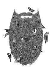 blackandwhite collage illustration nature birds wildlife nest beard man wtf surreal hipster detailed linework
