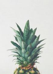 pineapple fruit tropical food leaves green teal yellow minimal retro vintage