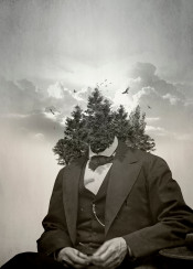 surrealism surreal collage vintage forest tree woods nature sky psychedelic crazy
