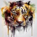 Tiger (alpha Series)