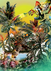 wildlife cats tropical exotic symmer colorful palm flowers
